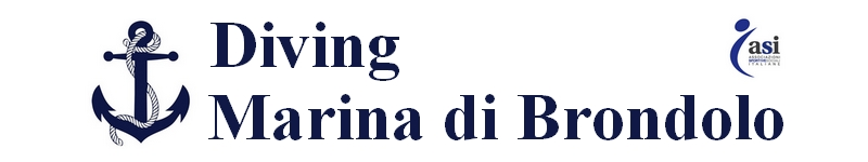 DivingMarinaBrondolo_logosito